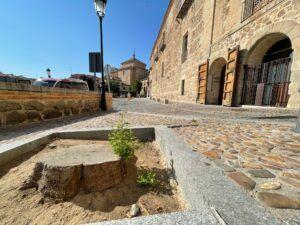 Más árboles, embellecimiento de balcones y elementos vegetales como trepadoras y jardines verticales, entre las propuestas de Ciudadanos Toledo para un Casco más verde