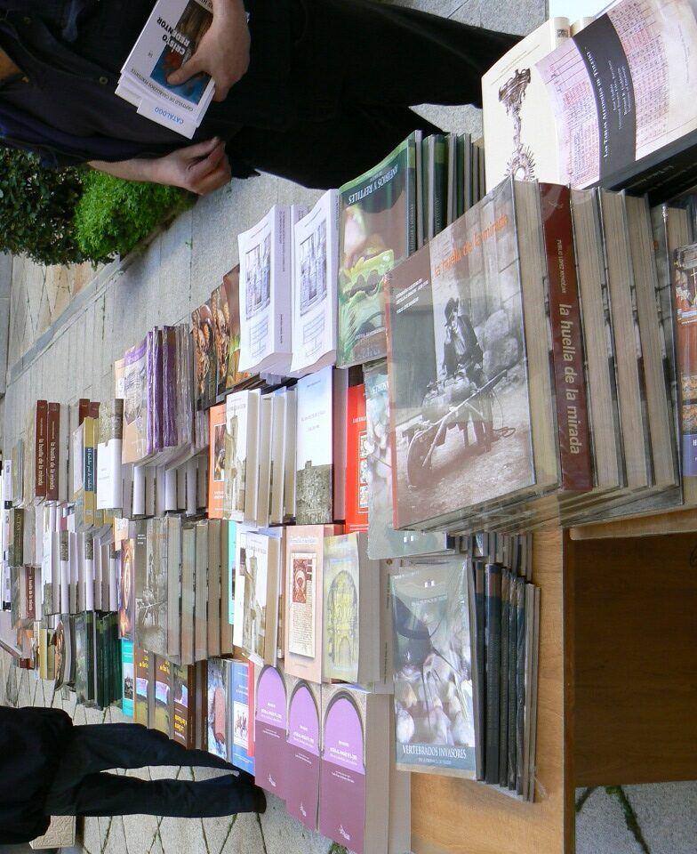 La Diputación de Toledo ha repartido más de 60.000 libros en las 176 bibliotecas municipales