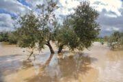 Fundación Eurocaja Rural organizará un gran encuentro sobre cambio climático, con iniciativas en la prevención de fenómenos extremos