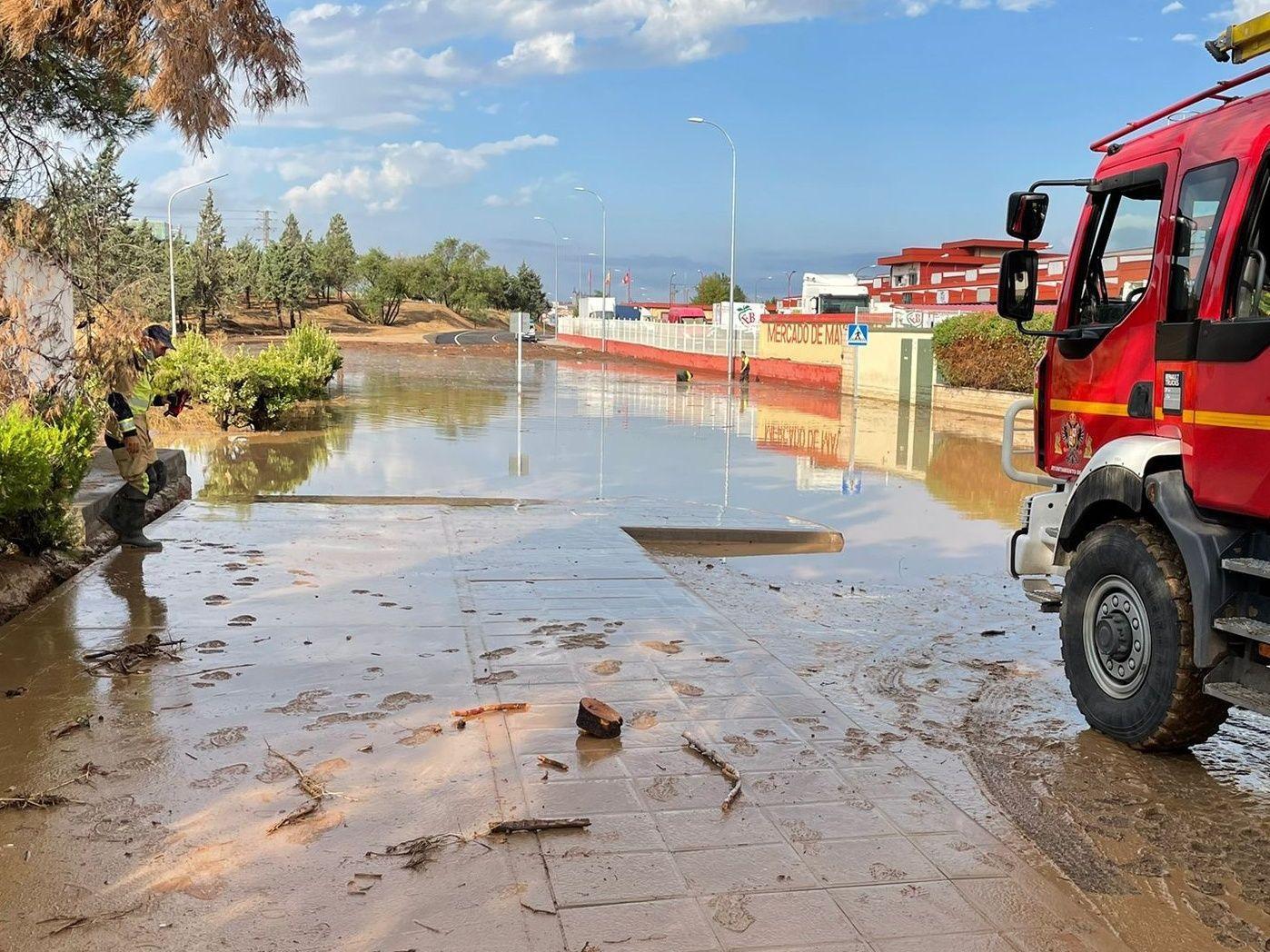 Paños (Cs) señala que los efectos de Filomena aumentan los daños causados por las tormentas y pide recursos extraordinarios para atajarlos cuanto antes