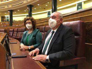 Los diputados nacionales del PP denuncian que Sánchez y Page abandonan a miles de familias, autónomos y pymes toledanas